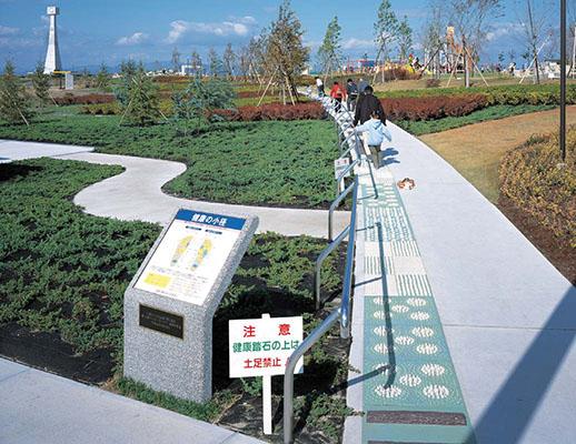ひまわりの丘公園1