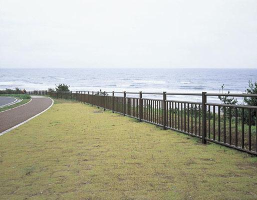 鹿島灘海浜公園2