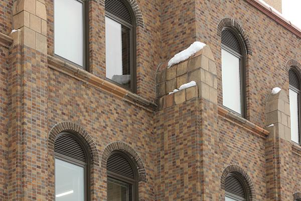 国立大学法人 北海道大学 総合博物館3