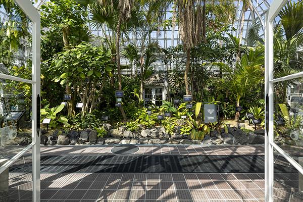 重要文化財 名古屋市東山植物園温室前館