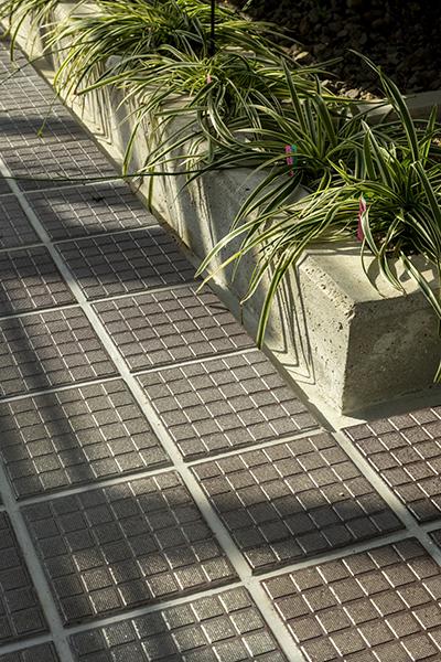 重要文化財 名古屋市東山植物園温室前館3