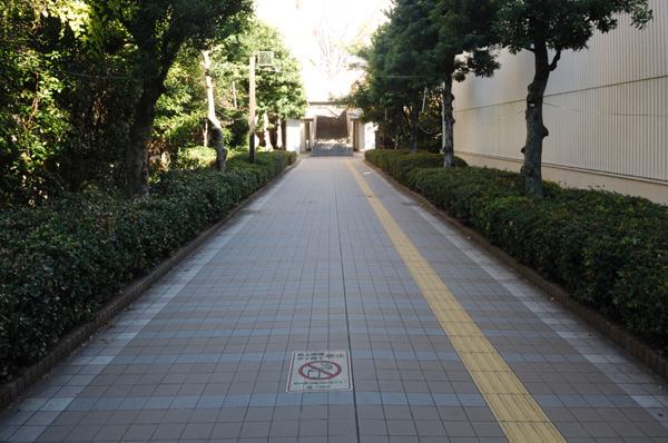 新百合ヶ丘駅周辺ペデストリアンデッキ4